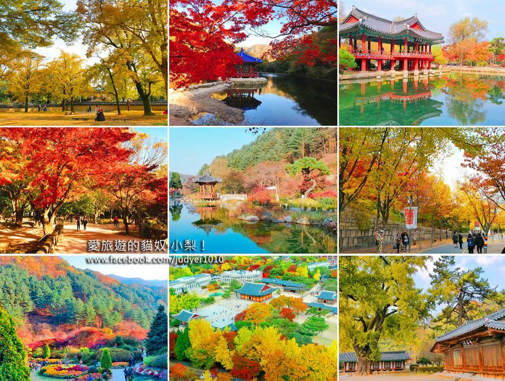 【韓國首爾賞楓、銀杏、紫芒】韓國必去賞楓景點推薦與2017韓國楓葉預測