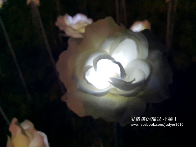 20151027_190014